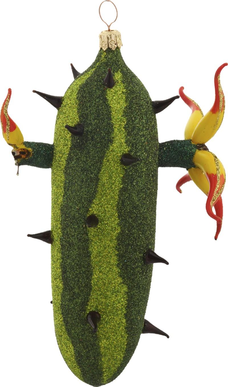 Kaktus Flowers